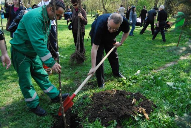 """Mai multe oficialităţi ale municipiului Cluj-Napoca au plantat astăzi arbori în Parcul Central în cadrul acţiunii """"Încă un pas spre verde"""""""