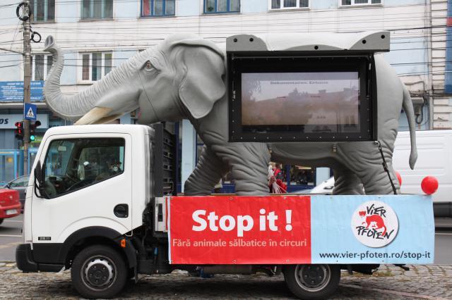 De-a lungul campaniei trei oameni costumați în animale se vor plimba pe străzile Clujului cu cartonașe roșii pentru a fi semnate de cei care susțin scopul campaniei