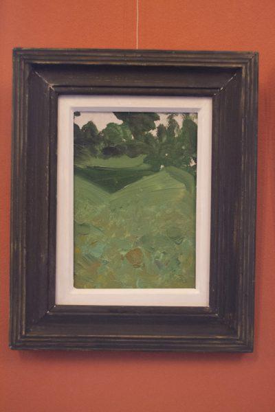 Grădina bunicii - Răzvan Liță Cu neuitatele amintiri din copilărie petrecute în gradină bunicii, Răzvan le-a surprins prin pictura realizată pe baza memoriei.