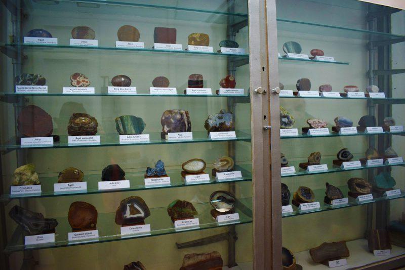 Colecție variată de pietre prețioase - calcedonii: onix, agat, heliotrop. În Muzeul de Istorie a Farmaciei există echipamente medicale folosite de-a lungul timpului, precum și diferite substanțe farmaceutice prezervate și conservate de zeci și sute de ani.