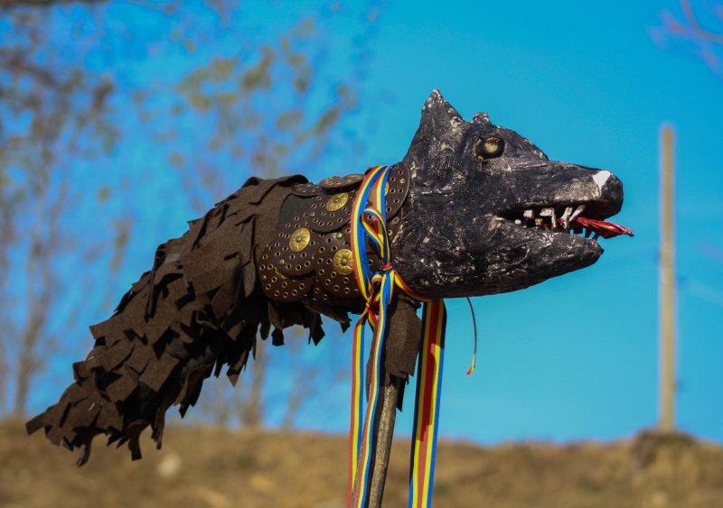 Reconstiturea lupului dacic, un simbol al unirii românilor